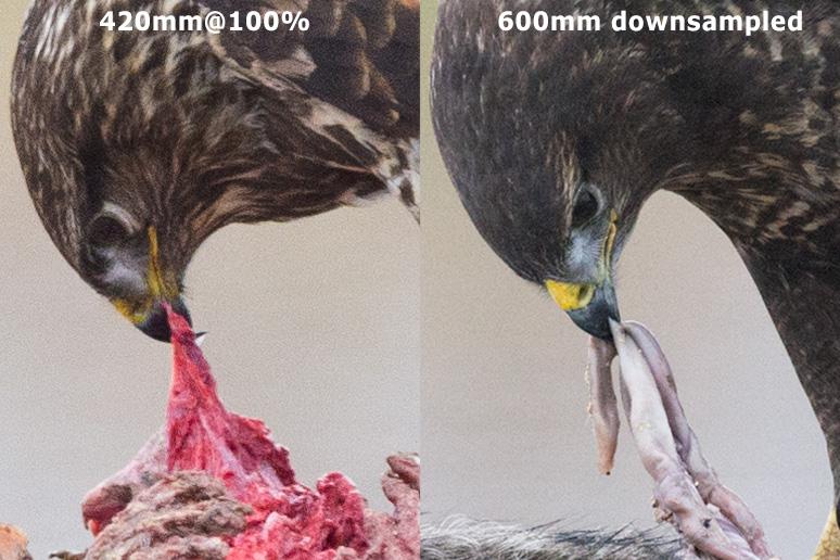 Comparison of 300mm + TC14 vs 600mm