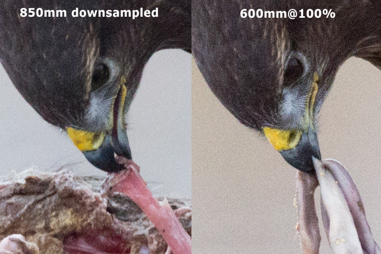 Comparison of 600mm + TC14 vs 600mm